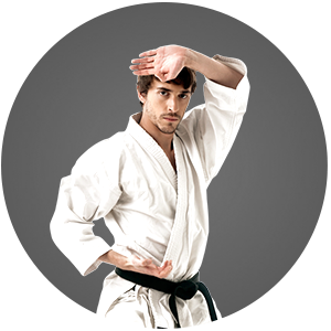 Martial Arts The Karate Academy Adult Programs